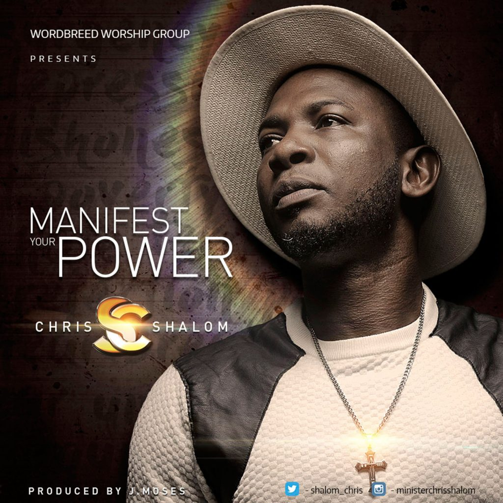 Manifest Your Power By Chris Shalom