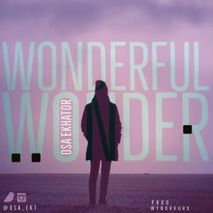 Wonderful Wonder Main Art